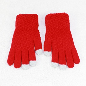 HZS-13248007 Factory wholesale winter warm ladies smart touch mobile phone gloves