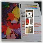 100% polyester waterproof Solvent Oil Canvas/Inkjet Canas/digital printing canvas