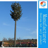 artificial pine trees camouflage tower guangzhou