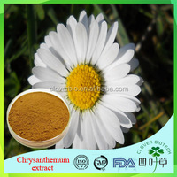 Hight qualit/Low price/100% Natural Herbal/Chinese Natural Pure Wild Chrysanthemum Extract