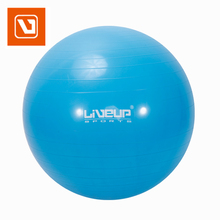 Anti Burst Professional Exercise, Stability and Yoga Ball for Fitness, Balance & Gym Workouts w/o Hand Pump