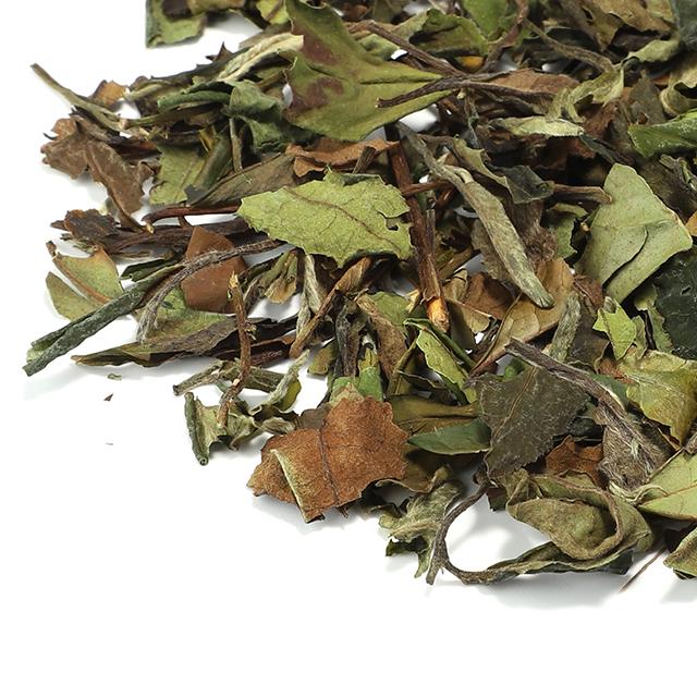 Chinese Fujian fuding White peony Organic white tea for healthy - 4uTea | 4uTea.com
