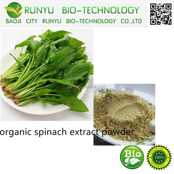 Chinese herb plant extract spinach leaf powder organic spinach extract powder
