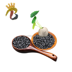 Good quality best selling dried black kidney beans
