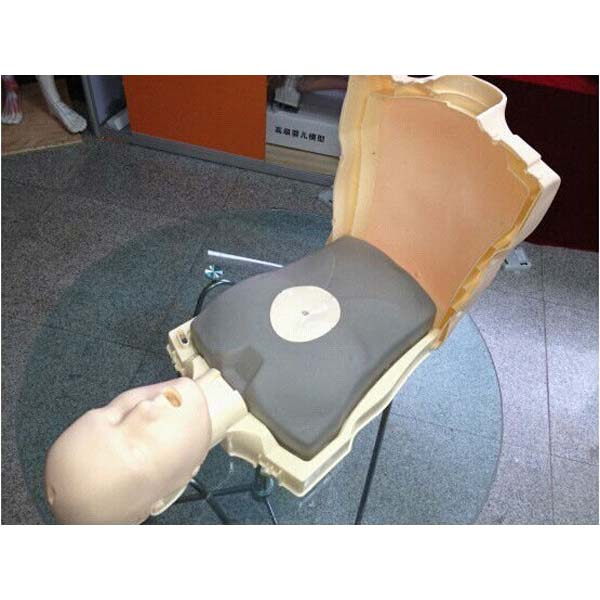 Simple Body First aid CPR manikin