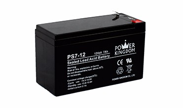 Power Kingdom High-quality agm battery life factory price deep discharge device-6