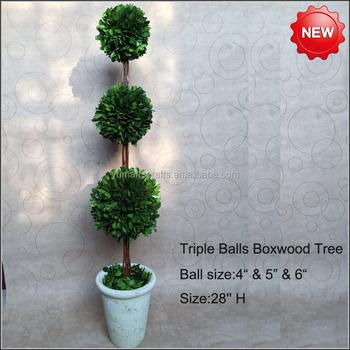 Preserved Boxwood Triple Tree Topiary