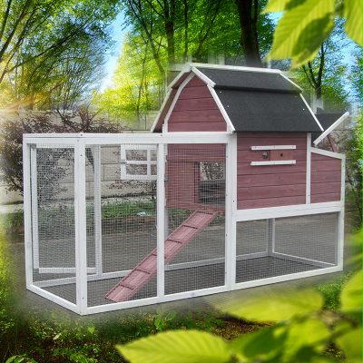 Farm large solid wooden chicken coop with nexting box
