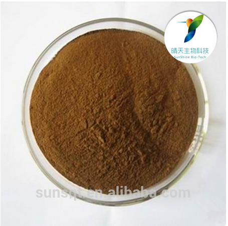 Warming Kidney and Strengthing Yang Product Radix Morinda Officinalis extract in bulk