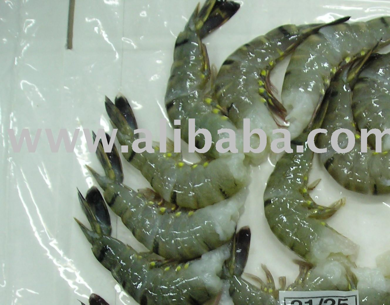 ====frozen Black Tiger Prawns===/===== Shrimp (wild And Farmed) ====== -  Buy Frozen Black Tiger Prawns / Shrimp (wild And Farmed Accepted) ==chinese