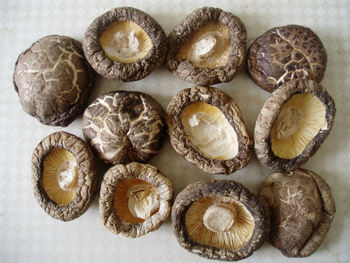 how to use dried shiitake mushrooms