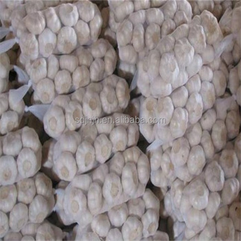 Chinese garlic price to international market