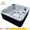 S600 Japan luxcury Free Sexy USA Massage Hot Tub with music spa
