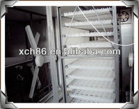 supplier of egg incubator diy