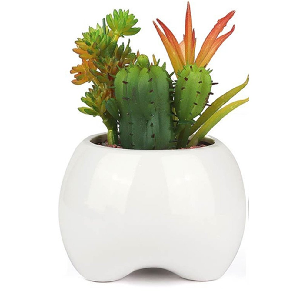 Yousun Ceramic Small Planter Pot,White Succulent Plant Pot/Cactus Garden Indoor Flower Pot with Bamboo Tray/Container/Planter for Succulents