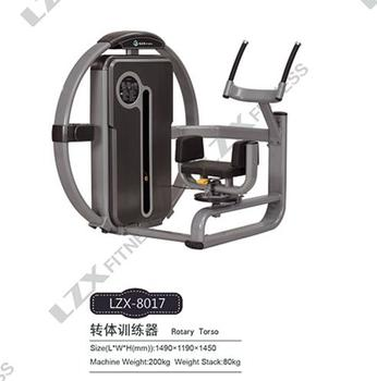 Factory Fitness Equipment Rotary Torso / Commercial Gym Machine