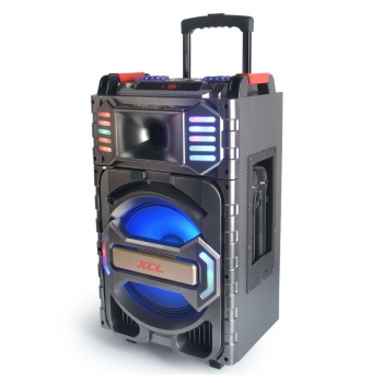 "12"" Portable Trolley Style Active Speaker With Rechargeable Battery from J.sun"