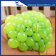 Wholesale newest stress release squeeze grape ball mesh water squishy toys