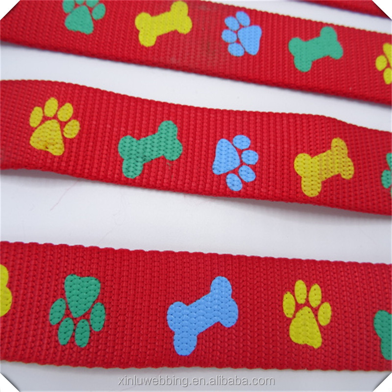 Bugee dog leash and good quality safety nylon dog collar with soft swivel hook