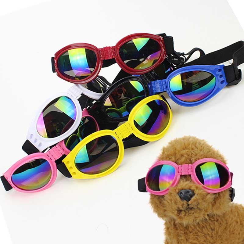 88a31f1a49 Catálogo de fabricantes de Gafas Para Perros de alta calidad y Gafas Para  Perros en Alibaba.com