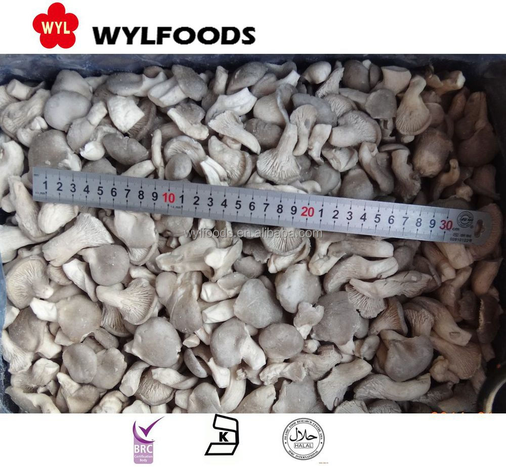 Delicious Chinese IQF Mushroom Frozen baby oyster mushroom
