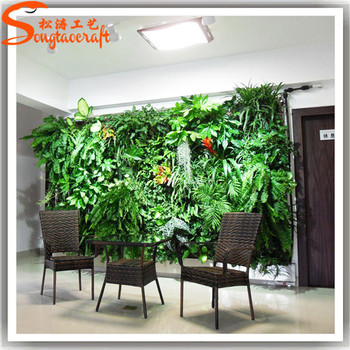plastic creeper plants type material grass type and vertical garden