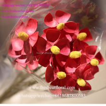 The Best Wholesale Artificial Dry Flowers Arrangements Ideas Supply The Highest Quality From Yunnan
