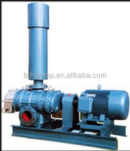 The roots vacuum pump