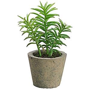 "8"" Succulent Artificial Plant w/Cement Pot -Green (pack of 6)"