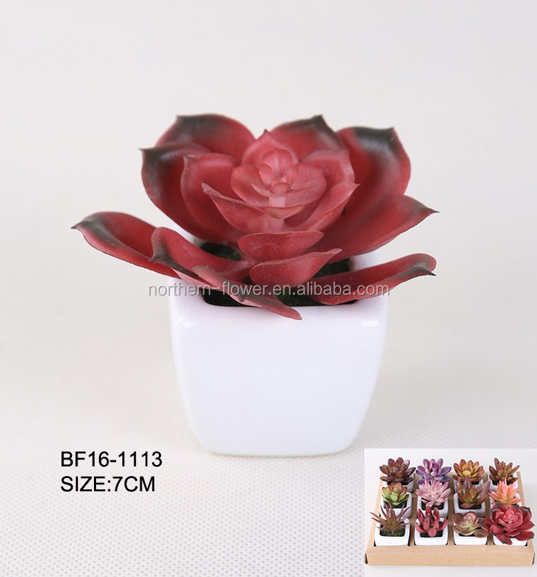 Mini cheap wholesale plastic artificial succulent plant in ceramic pot for table centerpiece decoration