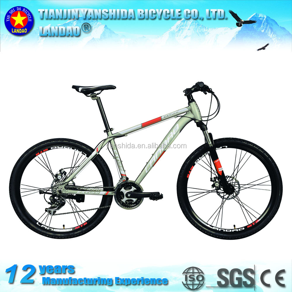 Hot sale comfort mountain bike with good quality and OEM design