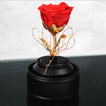 New Products High Quality Beauty And The Beast Rose Whole Preserved Eternal Roses With Led Lights