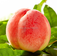 Best quality Chinese fresh sweet red peach with more juice
