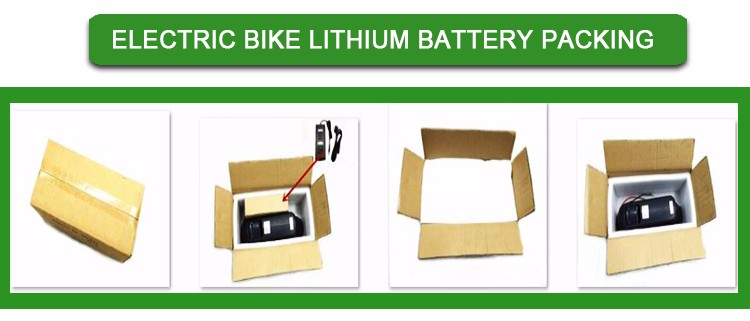 Professional li-ion silver fish ebike battery 36v with high quality