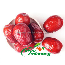 Organic dried chinese red dates/red jujubes fruits