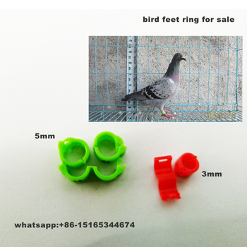 Split Ring For Chickens,Piegon,Birds,Parrots - Buy Split Ring Piegon,Split  Ring For Birds,Split Ring For Parrots Product on Alibaba com