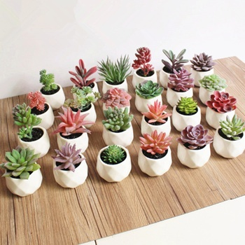 Artificial Fake Succulent Plants Potted