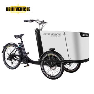 hot sale front loading 3 wheel electric kids tricycle cargo bicycle /adults cargo bike price