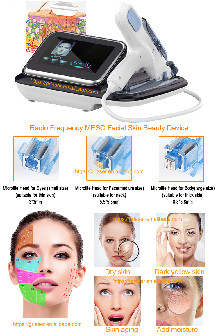 GRlaser Mesotherapy gun for skin rejuvenation Whitening Face Non Surgical Face Lift Microcrystal microneedle injector Machine