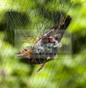 Plastic anti anti bird net with high quality