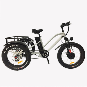 3 wheel ebike Cargo passenger electric tricycle with LCD panel