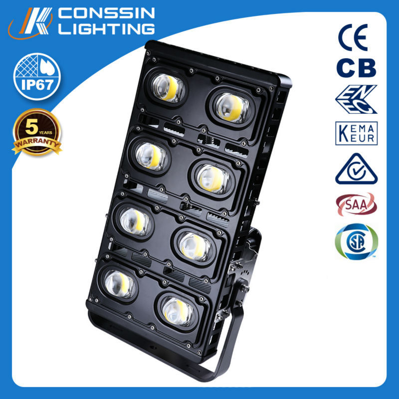 Hot Quality Reasonable Price Enec Approval 600W Led Floodlight