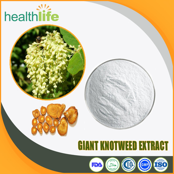 Natural Giant Knotweed Extract 50% 98% Resveratrol Powder 1kg with Best Price