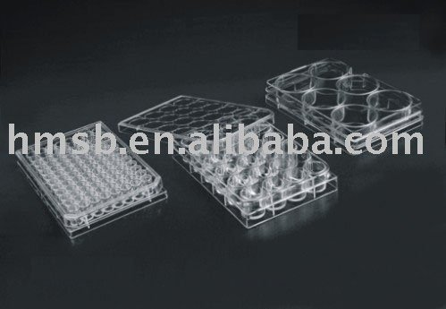 Cell Culture Dish