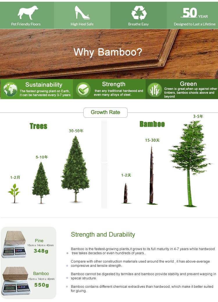 bamboo flooring-3