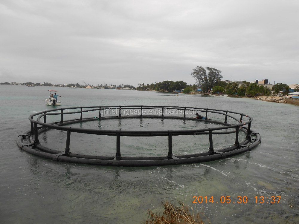 HDPE floating net cages for fish farming in the ocean