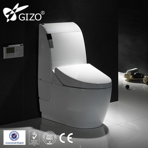 wholesale auto lid smart toilet spy toilet