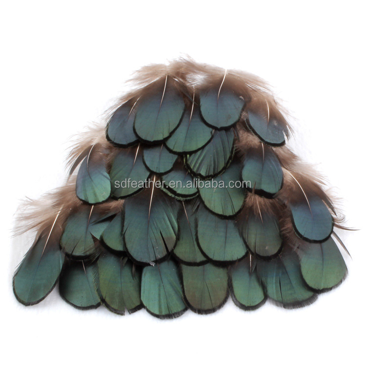 5-10cm Decorative Plumage Wholesale Natural Green Lady Amherst Pheasant Tippet Feather