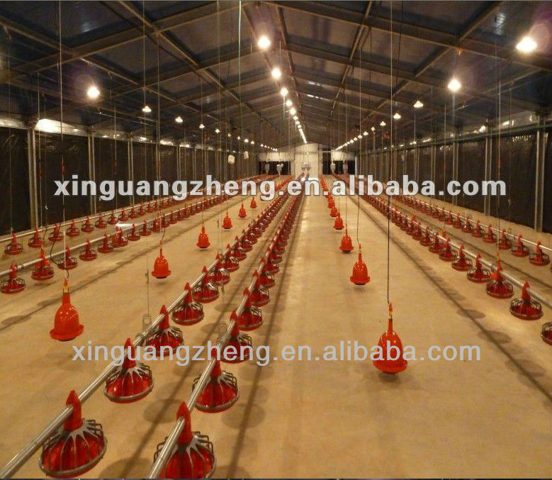 Automatic Modern Chicken Farm For Poultry House