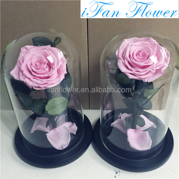 IFAN flower preserved roses in dome 20 colors available luxury flower box